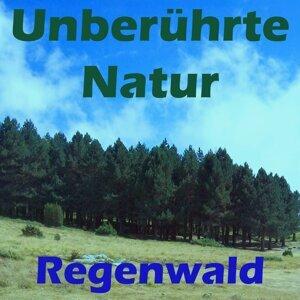 Regenwald 歌手頭像