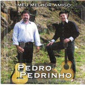Pedro & Pedrinho 歌手頭像