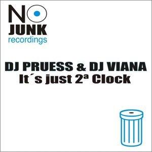 Dj Pruess & Dj Viana 歌手頭像