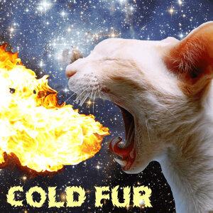Cold Fur 歌手頭像