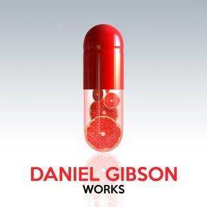 Daniel Gibson 歌手頭像