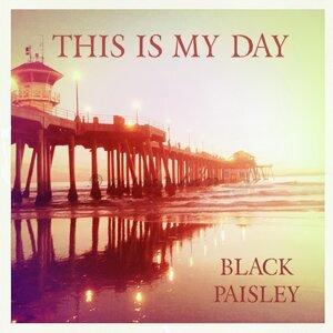 Black Paisley 歌手頭像