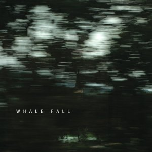 Whale Fall 歌手頭像