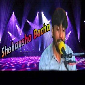 Shehansha Bacha 歌手頭像