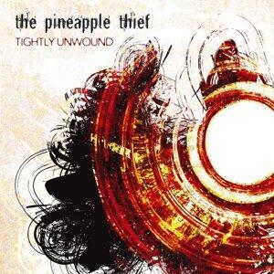 The Pineapple Thief 歌手頭像