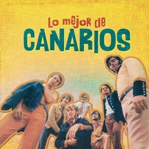 Canarios 歌手頭像