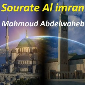 Mahmoud Abdelwaheb 歌手頭像