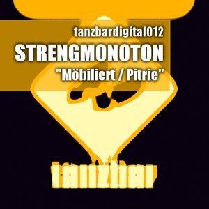 StrengMonoton 歌手頭像