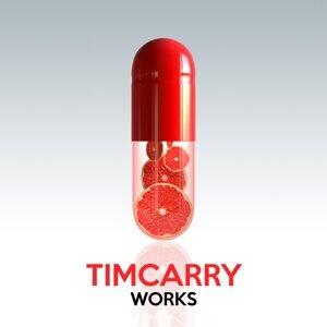 Timcarry 歌手頭像