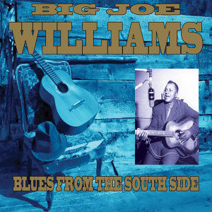 Big Joe Williams 歌手頭像