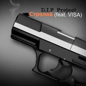 D.I.P Project 歌手頭像