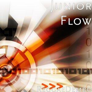 Junior Flow