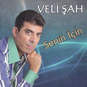 Veli Şah 歌手頭像