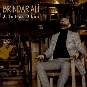 Brindar Ali 歌手頭像