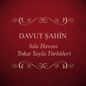 Davut Şahin 歌手頭像