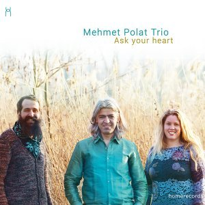 Mehmet Polat Trio 歌手頭像