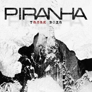 Piranha 歌手頭像
