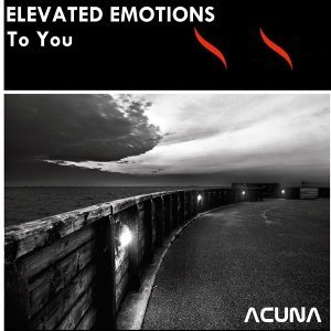 Elevated Emotions 歌手頭像