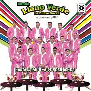 Banda Llano Verde 歌手頭像