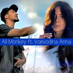 Ali Monkey 歌手頭像