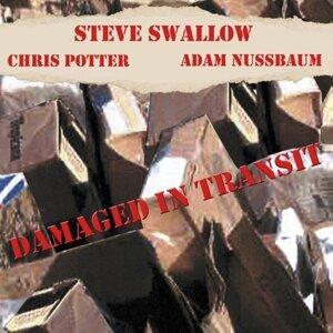 Steve Swallow & Adam Nussbaum & Chris Potter 歌手頭像