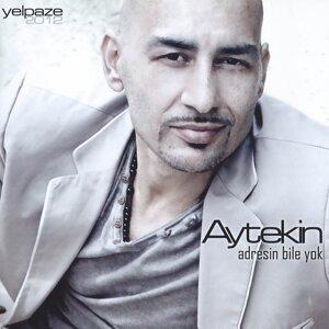 Aytekin 歌手頭像