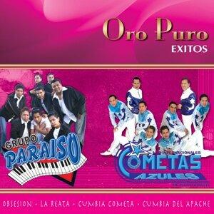 Los Internacionales Cometas Azules De Mario Rosete, Grupo Paraiso 歌手頭像