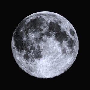 The Moon Chambers 歌手頭像