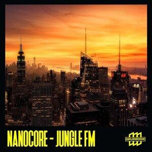 Nanocore 歌手頭像