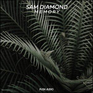 Sam Diamond 歌手頭像