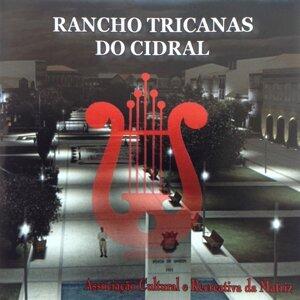 Rancho Tricanas do Cidral 歌手頭像