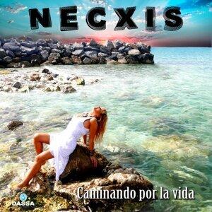 Necxis 歌手頭像
