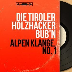 Die Tiroler Holzhacker Bub'n 歌手頭像