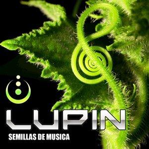 Lupin 歌手頭像