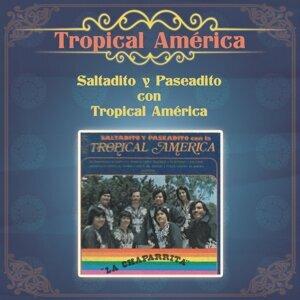 Tropical America 歌手頭像