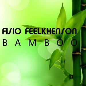 Fisio Feelkhenson