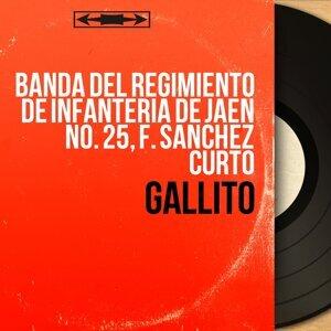 Banda del Regimiento de Infanteria de Jaén No. 25, F. Sanchez Curto 歌手頭像