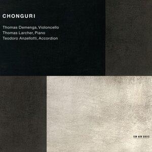 Thomas Demenga & Thomas Larcher & Teodoro Anzellotti 歌手頭像