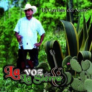 La Voz De La Sierra 歌手頭像