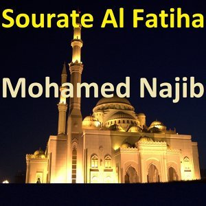 Mohamed Najib 歌手頭像