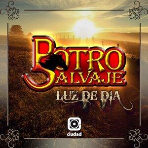Potro Salvaje 歌手頭像