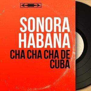 Sonora Habana 歌手頭像