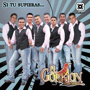 Grupo Gorrión de Tuzantla 歌手頭像