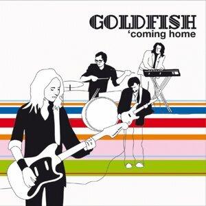 Goldfish 歌手頭像