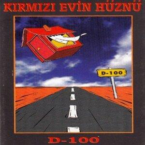 D - 100 歌手頭像