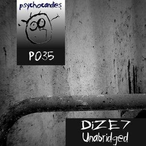 DiZE7 歌手頭像