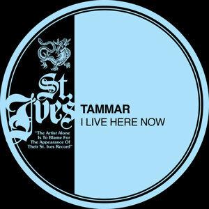 Tammar 歌手頭像