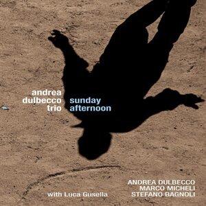 Andrea Dulbecco Trio 歌手頭像