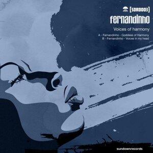 Fernandinho 歌手頭像