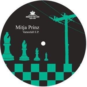 Mitja Prinz 歌手頭像